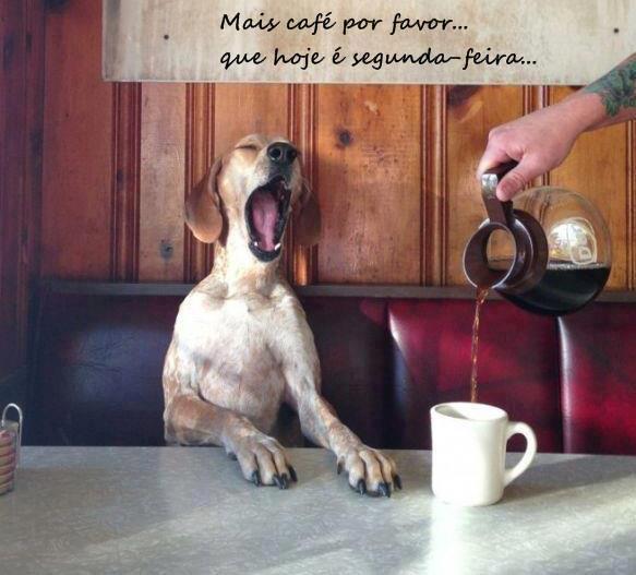 Mais café por favor…