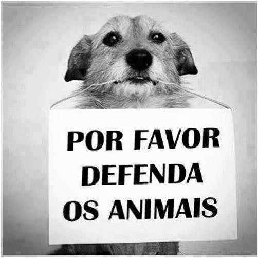 Defenda os animais