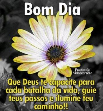 mensagem de deus de Bom dia Flor