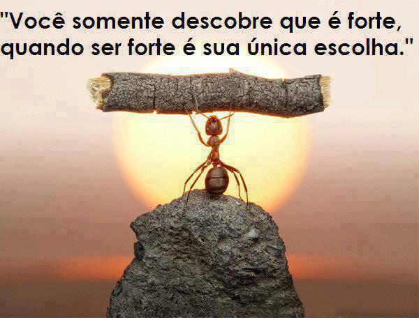 você somente descobre que é forte quando ser forte é sua única escolha