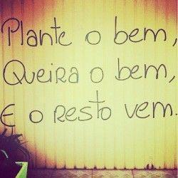 Plante o bem