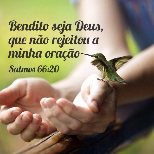 Muito Bendito seja Deus, que não rejeitou a minha oração. (Salmos TN77