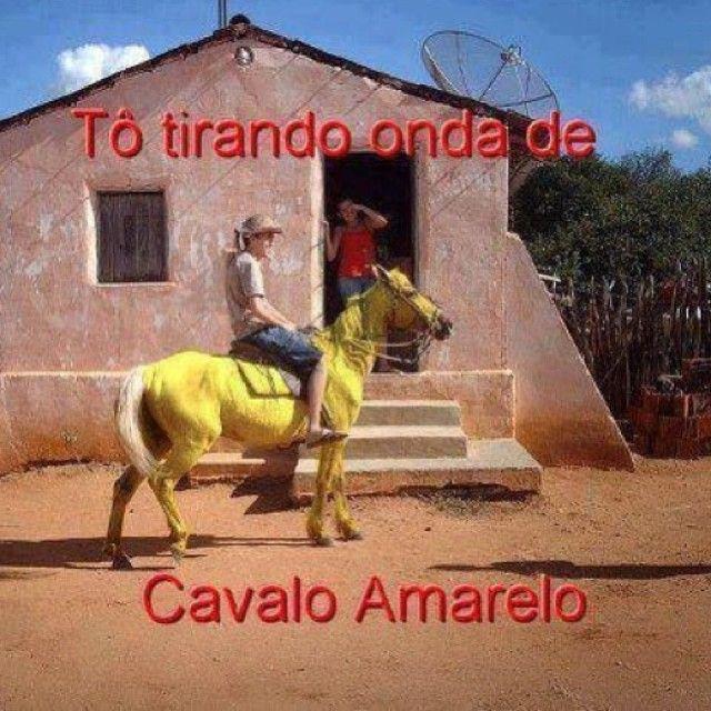 Tô Tirando Onda De Cavalo Amarelo