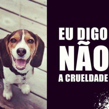Eu digo não a crueldade