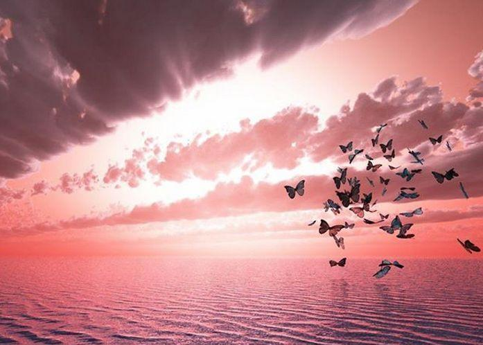 A paz que você procura muitas vezes está no silêncio que