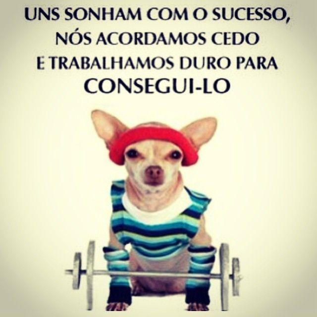 Uns sonham com o sucesso