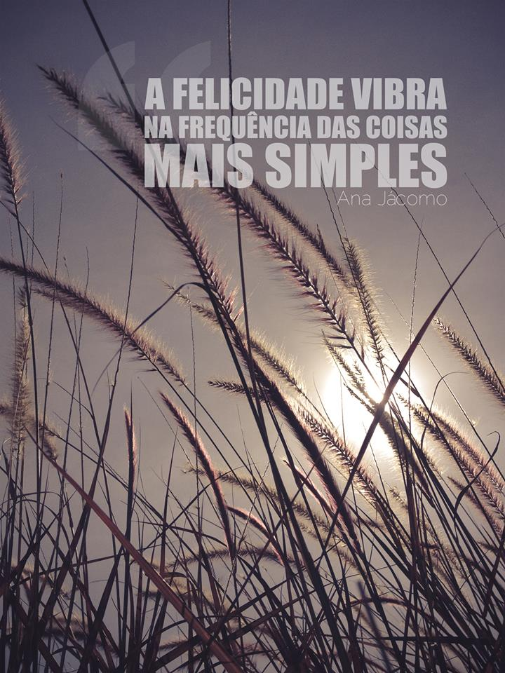 A felicidade vibra