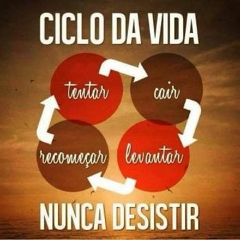 Ciclo da vida