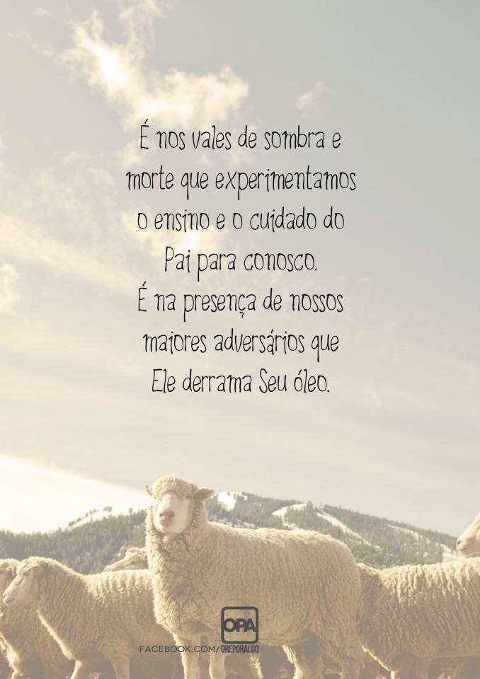 Frases e Pensamentos Marcantes « Blog do Marcelão