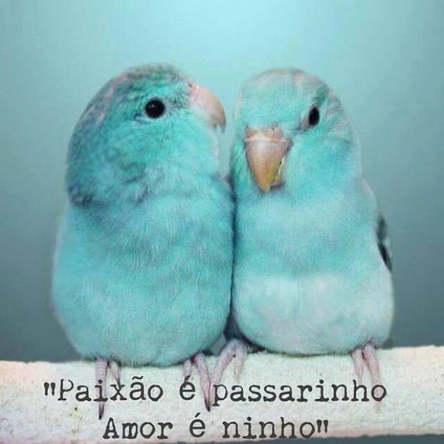 Amor e paixão