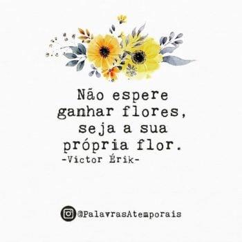 sua própria flor