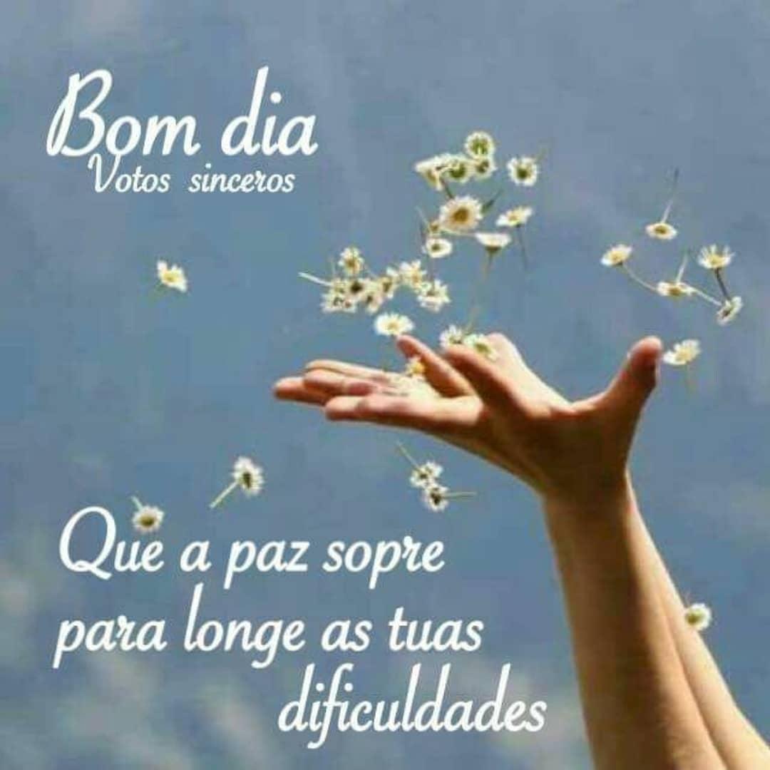 Bom dia! Que a paz sopre para longe as tuas dificuldades.