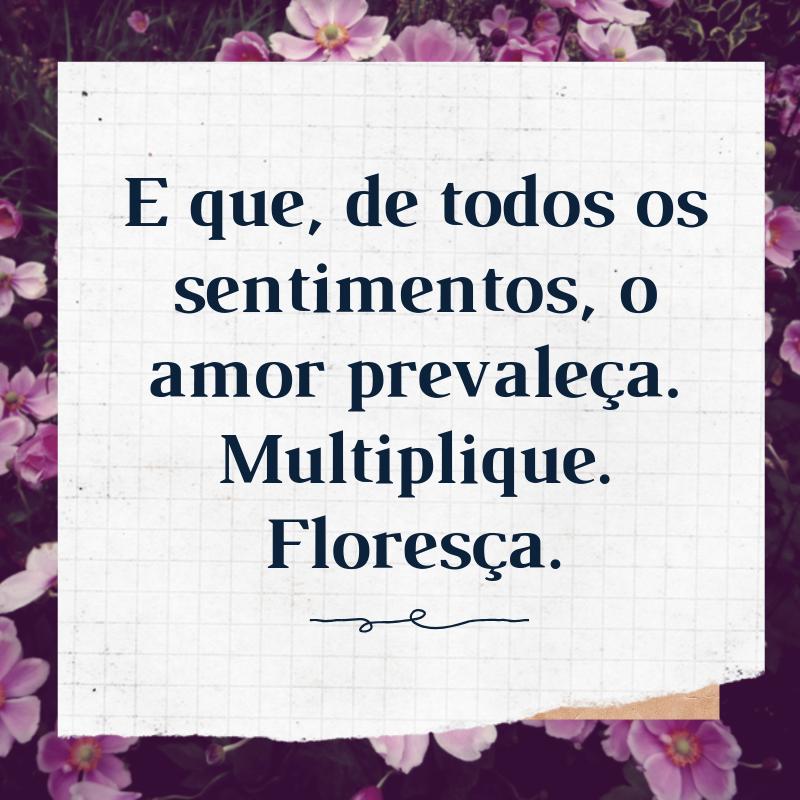E que, de todos os sentimentos, o amor prevaleça. Multiplique. Floresça.
