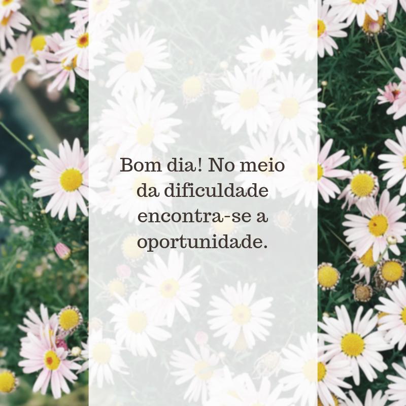 Bom dia! No meio da dificuldade encontra-se a oportunidade.