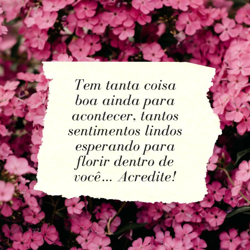 Tem tanta coisa boa ainda para acontecer, tantos sentimentos lindos esperando para florir dentro de você… Acredite!