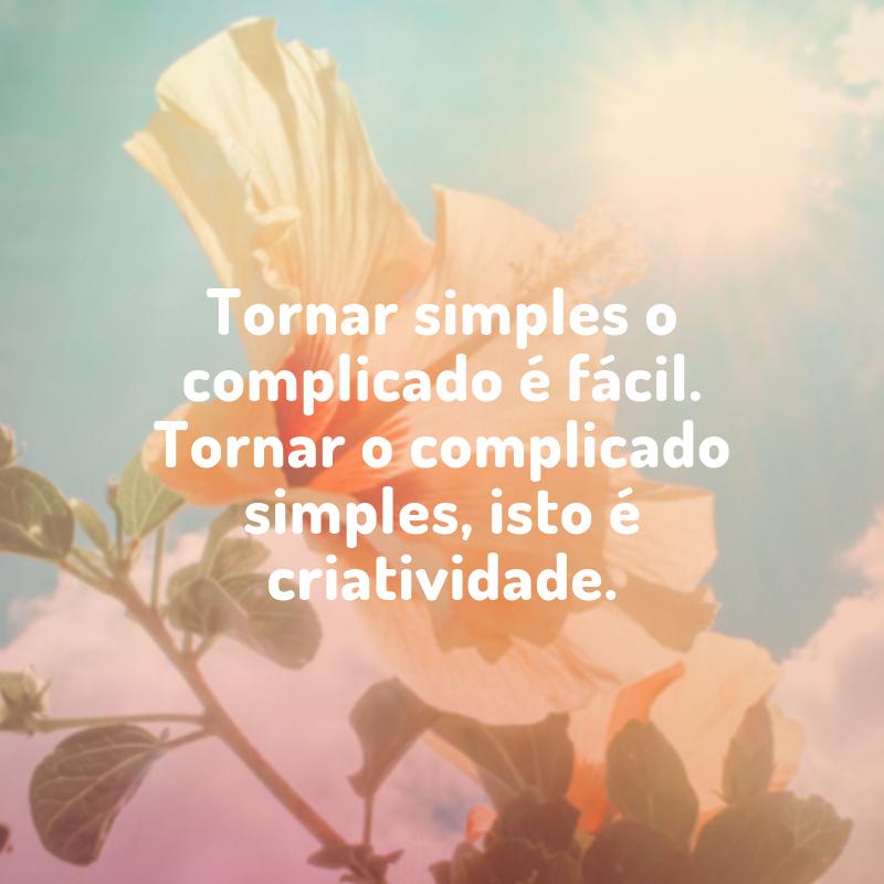 Tornar simples o complicado é fácil. Tornar o complicado simples, isto é criatividade.