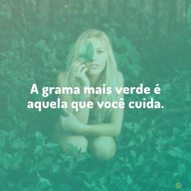 A grama mais verde é aquela que você cuida.