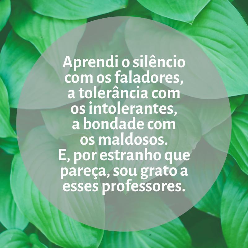 Aprendi o silêncio com os faladores, a tolerância com os intolerantes, a bondade com os maldosos. E, por estranho que pareça, sou grato a esses professores.