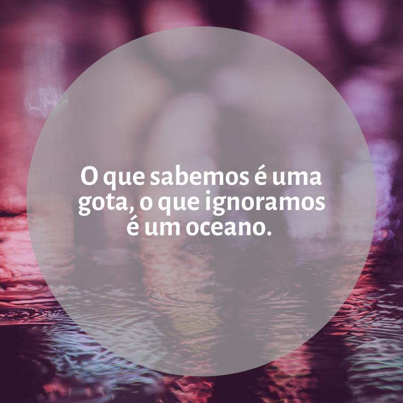 O que sabemos é uma gota, o que ignoramos é um oceano.
