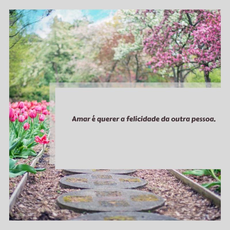 Amar é querer a felicidade da outra pessoa.