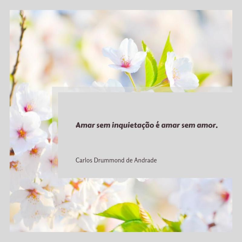 Amar sem inquietação é amar sem amor.