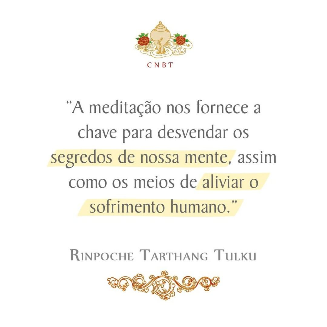 A meditação nos fornece a chave para desvendar os segredos de nossa mente, assim como os meios de aliviar o sofrimento humano.
