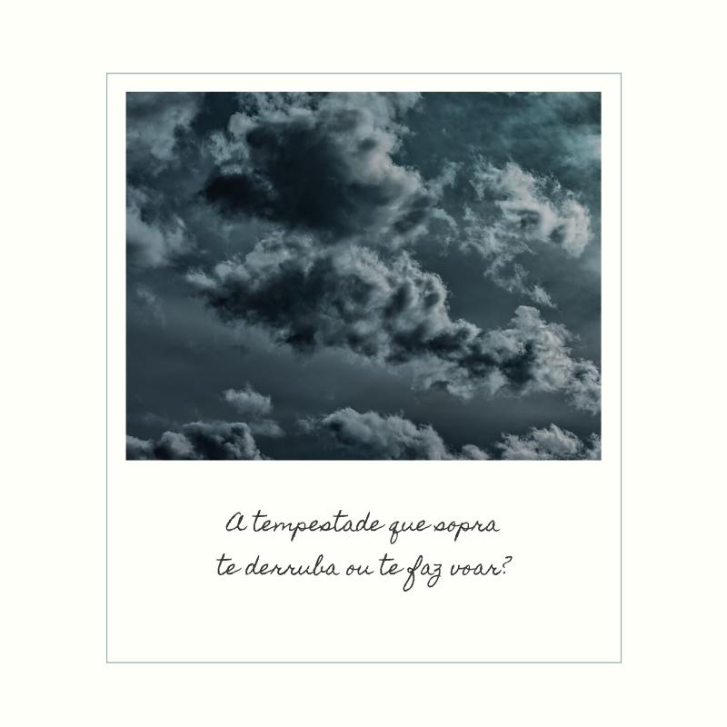 A tempestade que sopra te derruba ou te faz voar?