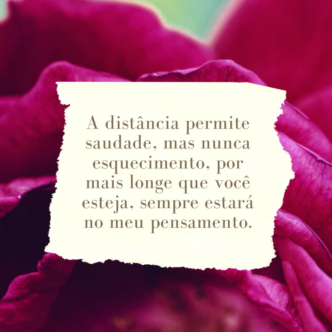A distância permite saudade, mas nunca esquecimento, por mais longe que você esteja, sempre estará no meu pensamento.