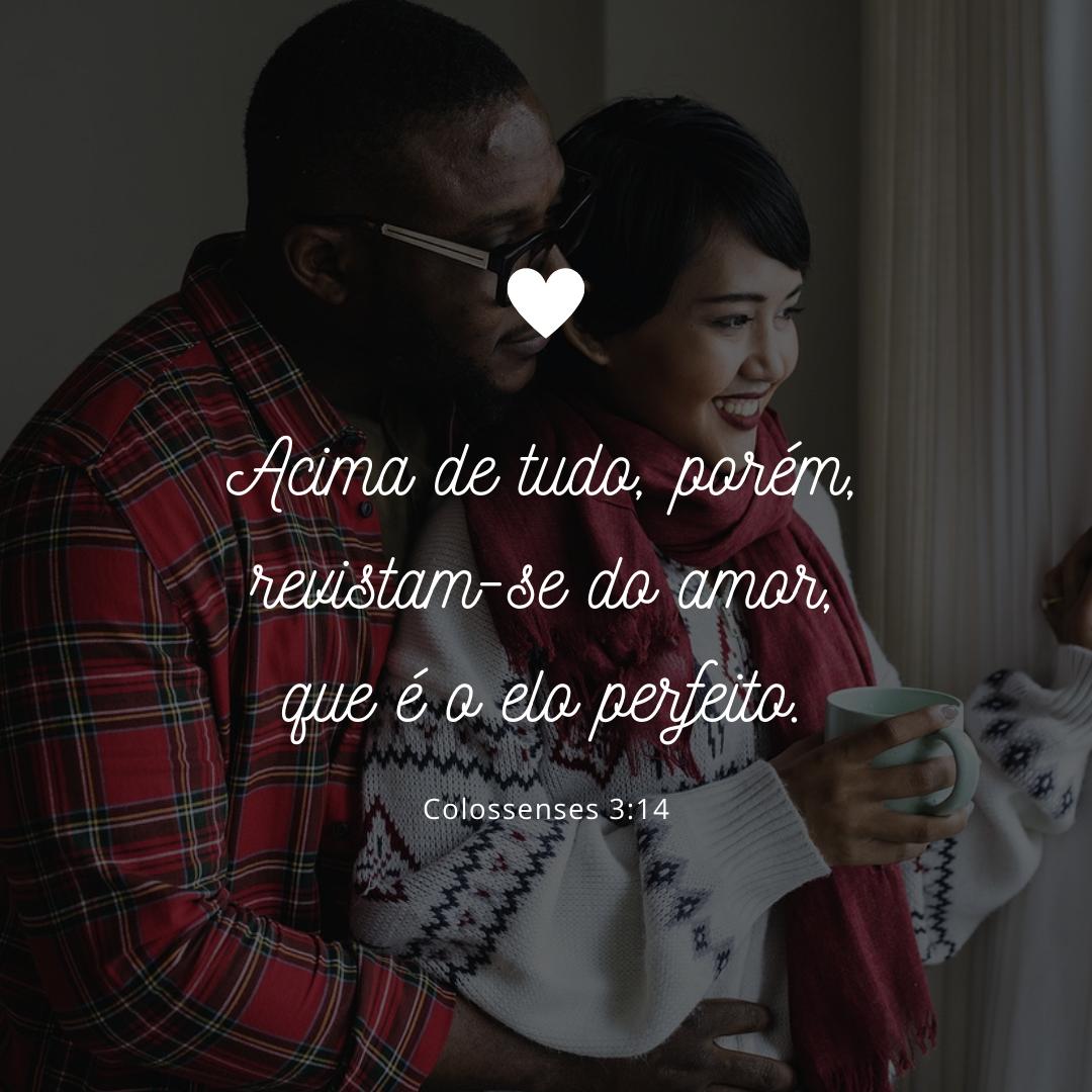 Acima de tudo, porém, revistam-se do amor, que é o elo perfeito.