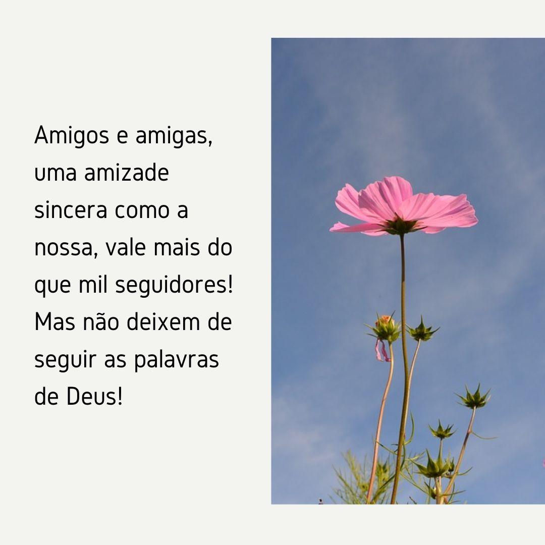 Amigos e amigas, uma amizade sincera como a nossa, vale mais do que mil seguidores! Mas não deixem de seguir as palavras de Deus!