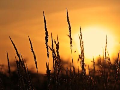 50 mensagens de bom dia de Deus para ter uma manhã abençoada