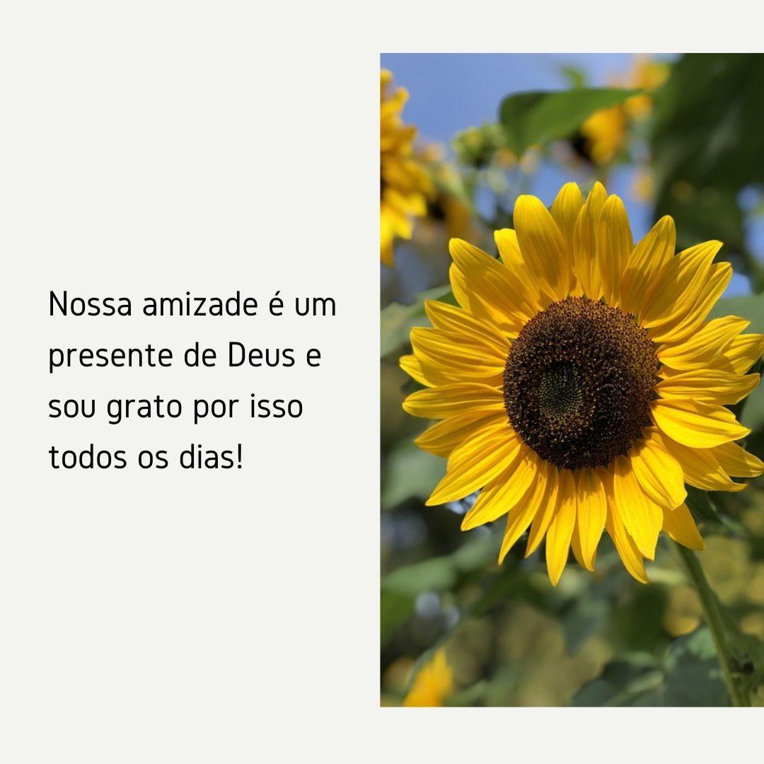 Nossa amizade é um presente de Deus e sou grato por isso todos os dias!