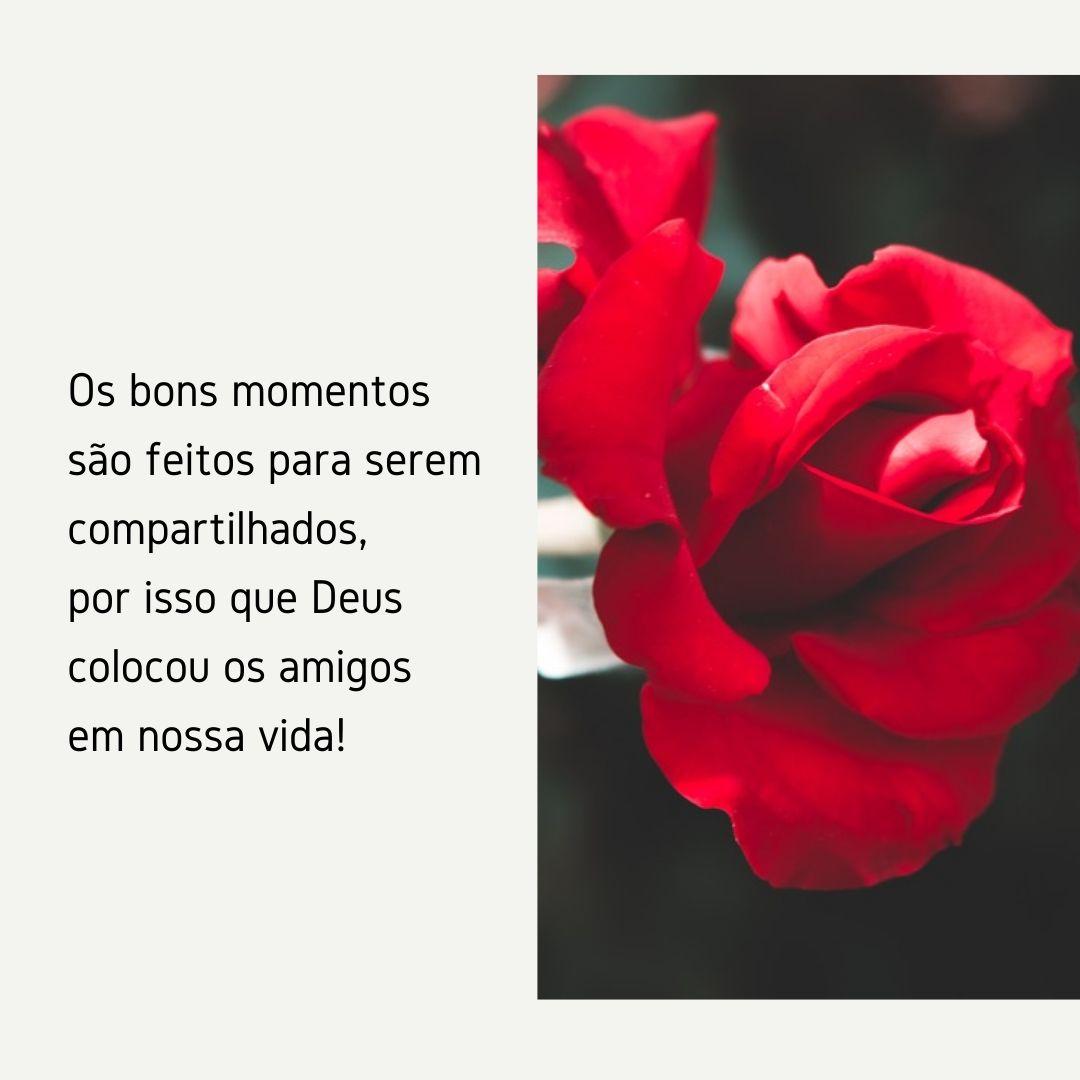 Os bons momentos são feitos para serem compartilhados, por isso que Deus colocou os amigos em nossa vida!