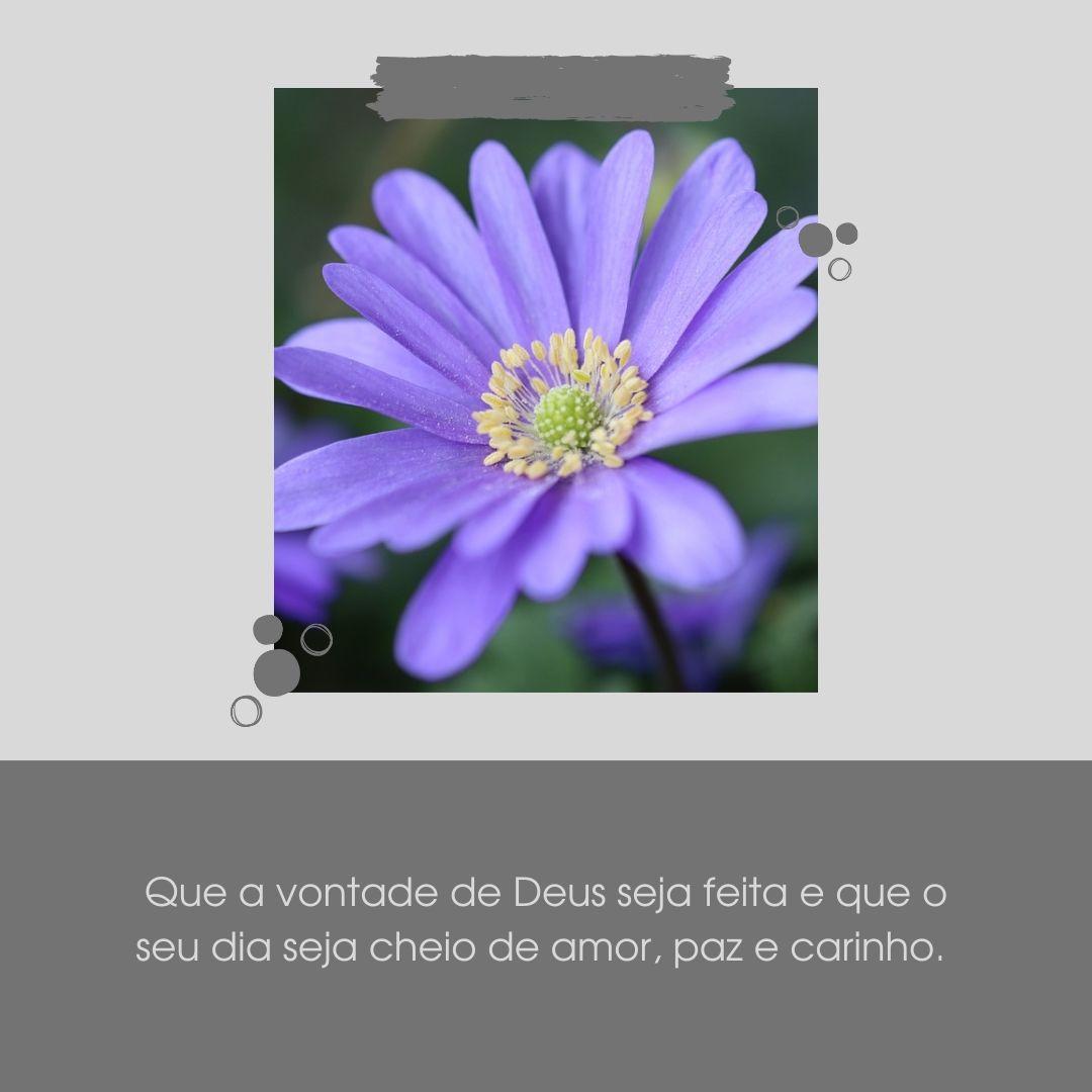Que a vontade de Deus seja feita e que o seu dia seja cheio de amor, paz e carinho.
