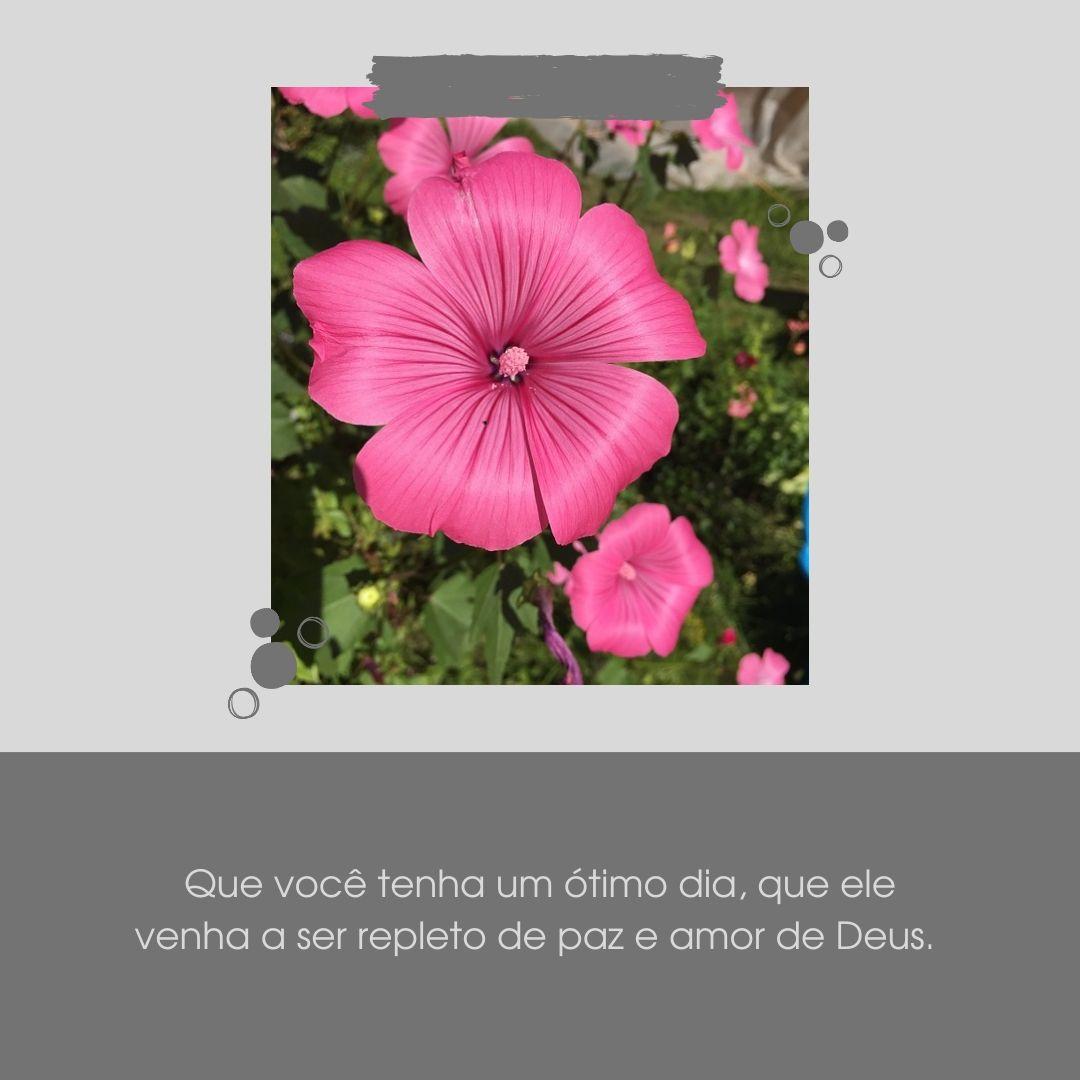Que você tenha um ótimo dia, que ele venha a ser repleto de paz e amor de Deus.