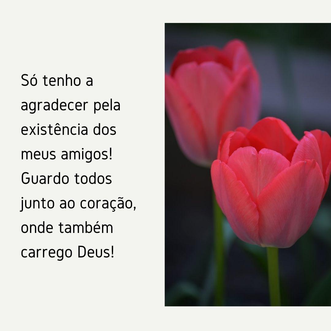 Só tenho a agradecer pela existência dos meus amigos! Guardo todos junto ao coração, onde também carrego Deus!