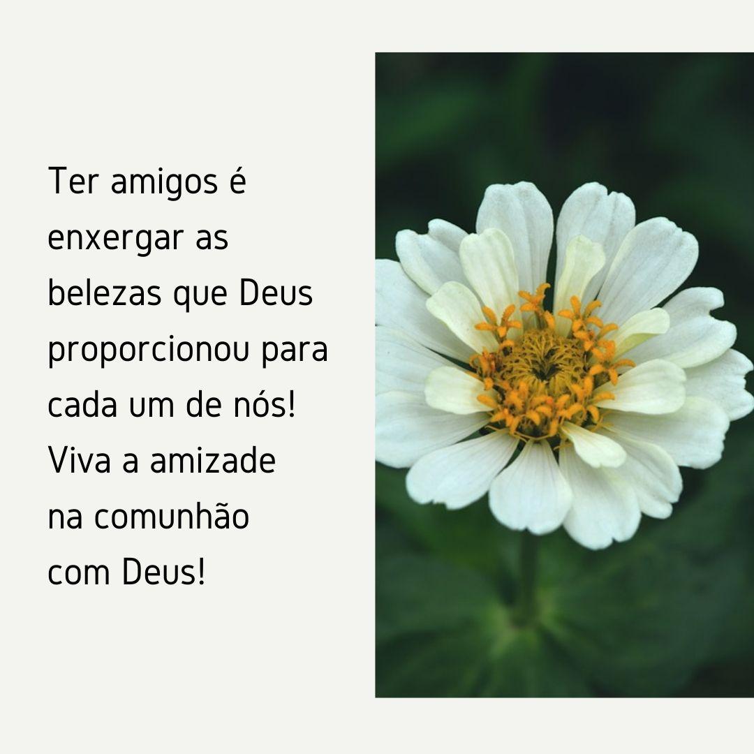 Ter amigos é enxergar as belezas que Deus proporcionou para cada um de nós! Viva a amizade na comunhão com Deus!