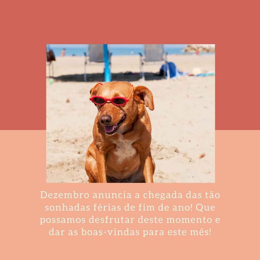 Dezembro anuncia a chegada das tão sonhadas férias de fim de ano! Que possamos desfrutar deste momento e dar as boas-vindas para este mês!