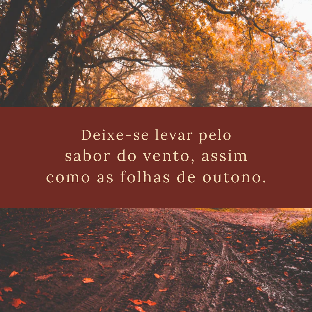 Deixe-se levar pelo sabor do vento, assim como as folhas de outono.