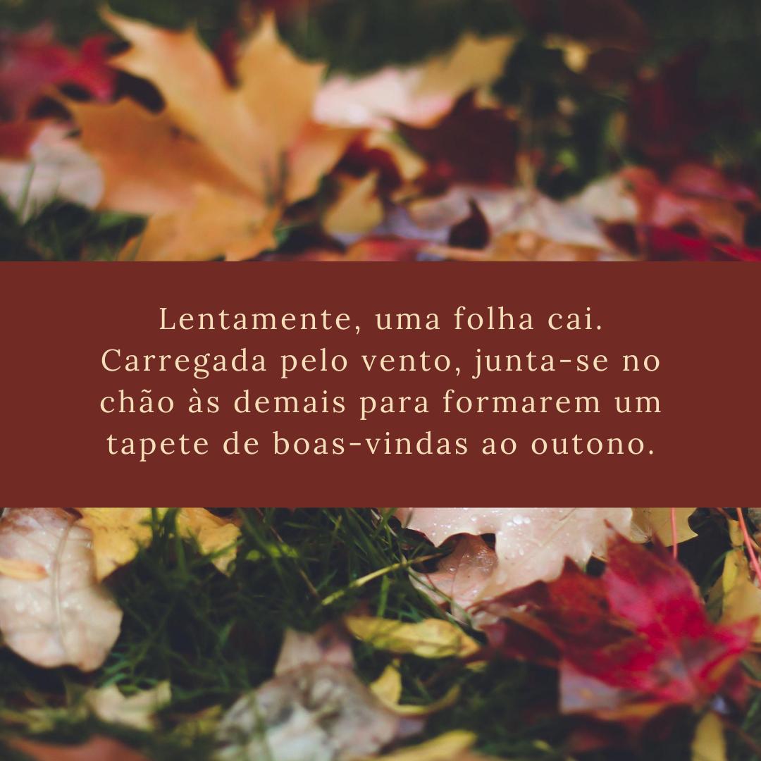 Lentamente, uma folha cai. Carregada pelo vento, junta-se no chão às demais para formarem um tapete de boas-vindas ao outono.