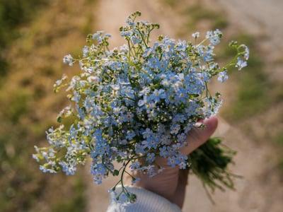 40 mensagens de perdão para se reconciliar com quem lhe é importante