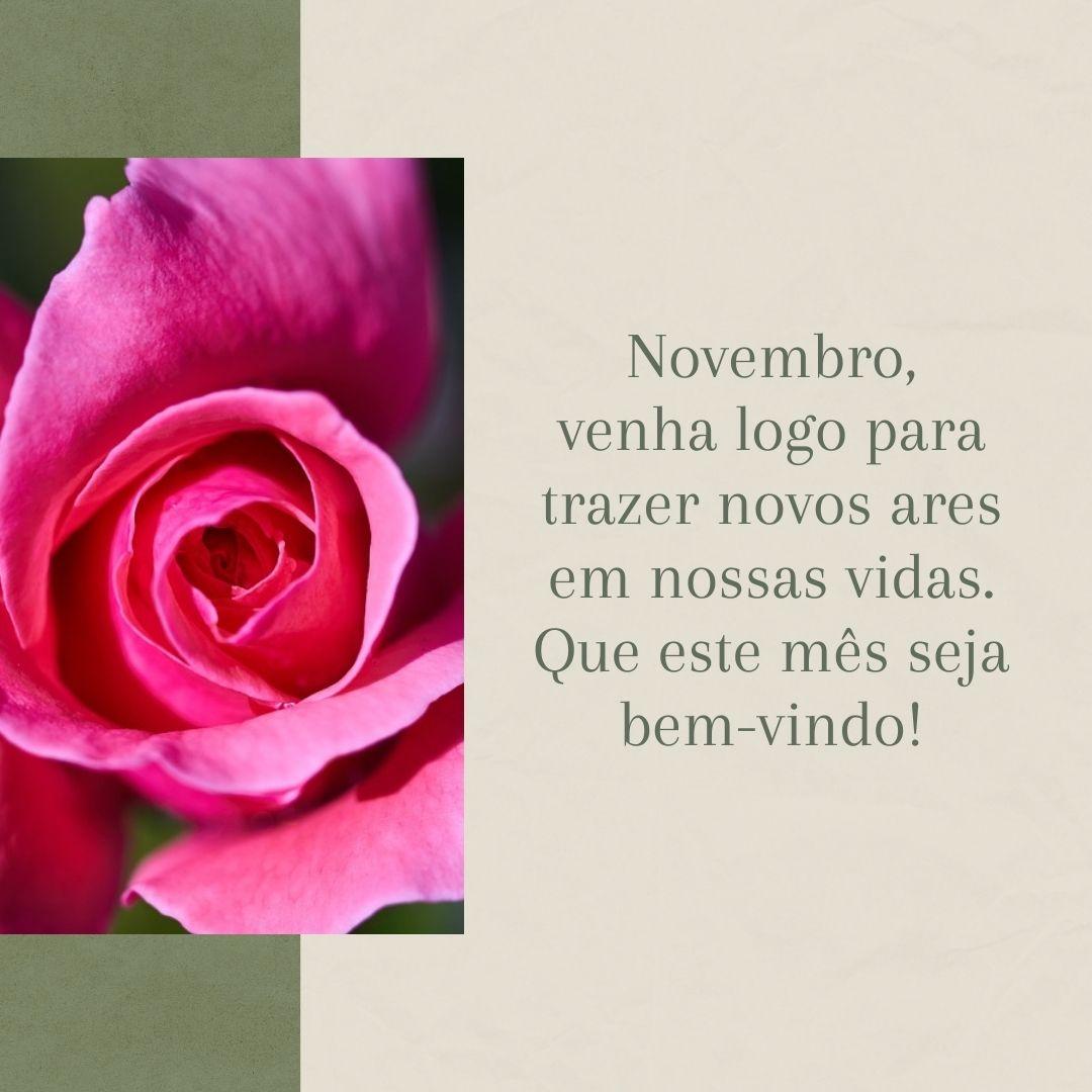 Novembro, venha logo para trazer novos ares em nossas vidas. Que este mês seja bem-vindo!
