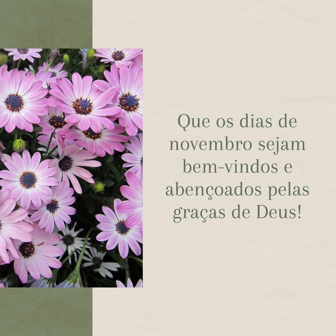 Que os dias de novembro sejam bem-vindos e abençoados pelas graças de Deus!