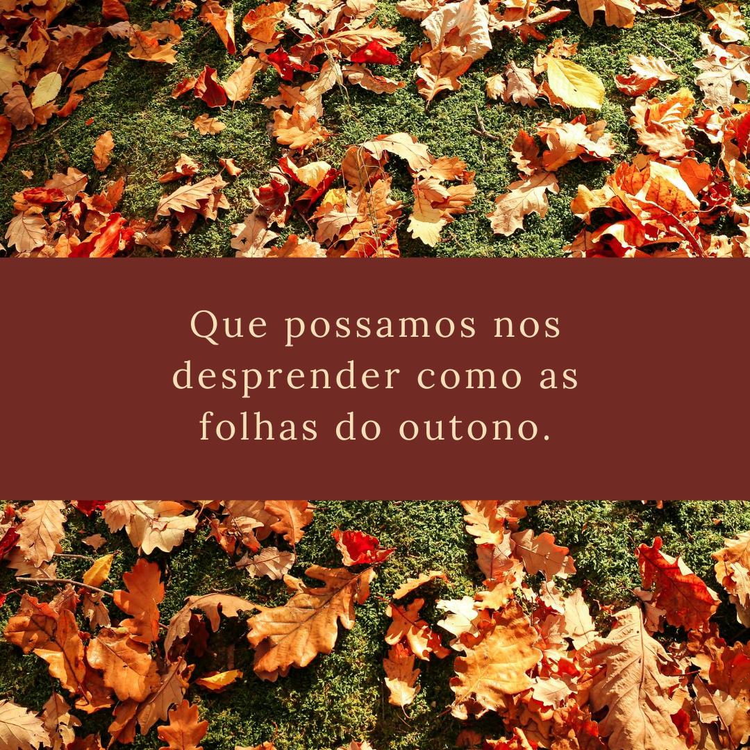Que possamos nos desprender como as folhas do outono.