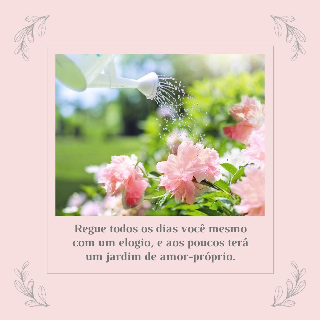 Regue todos os dias você mesmo com um elogio, e aos poucos terá um jardim de amor-próprio.