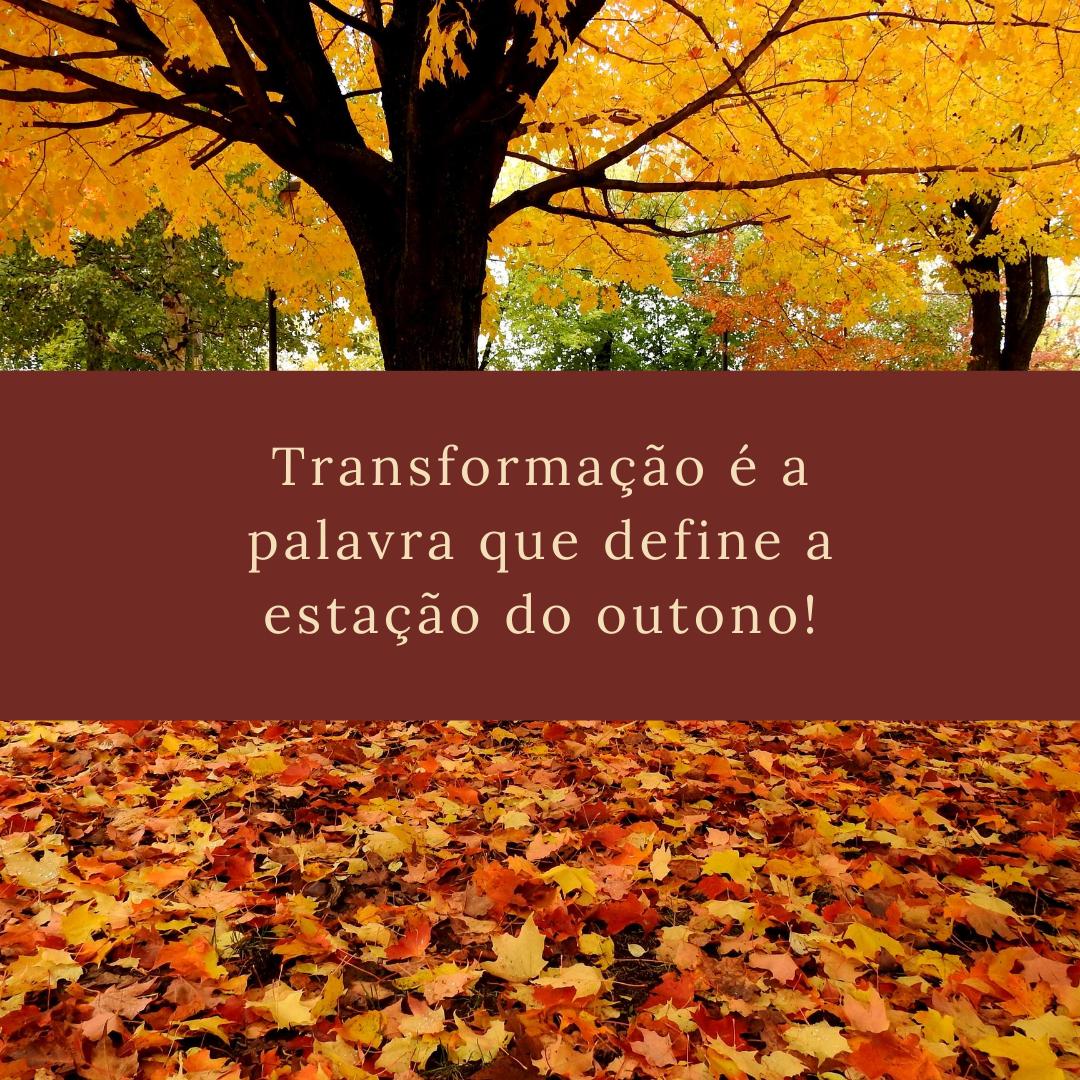 Transformação é a palavra que define a estação do outono!