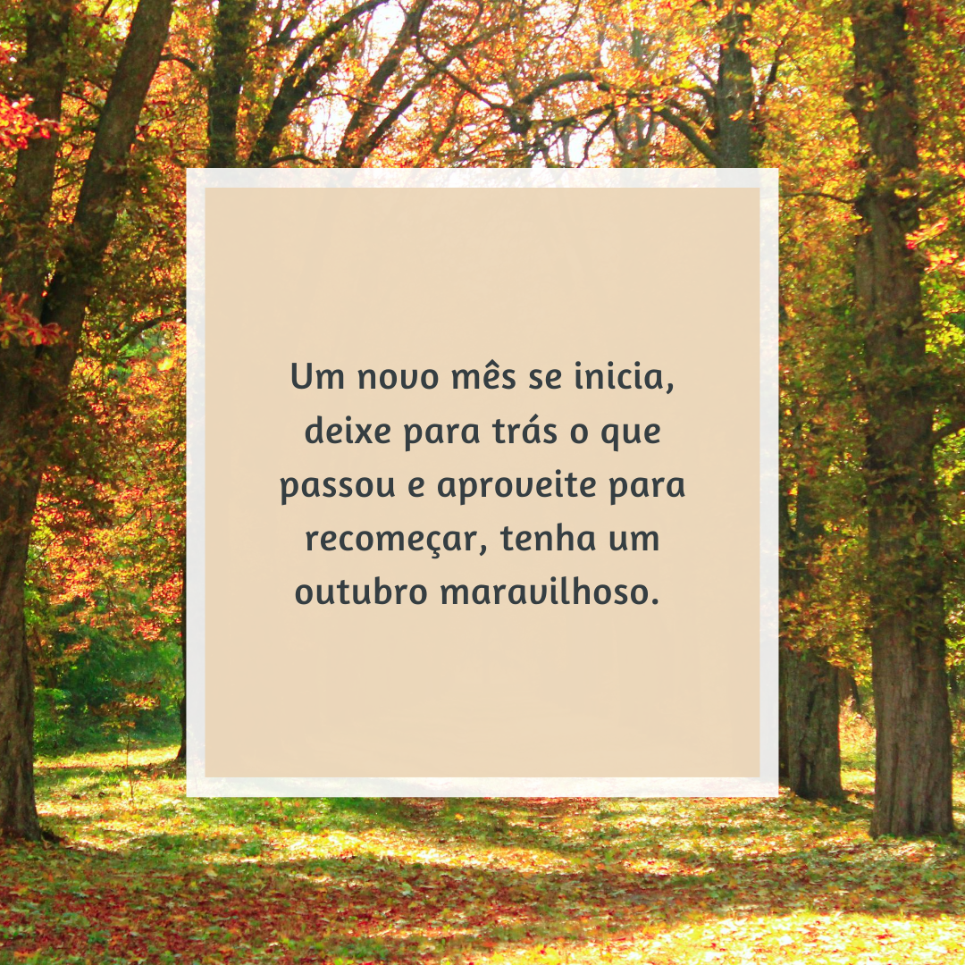 Um novo mês se inicia, deixe para trás o que passou e aproveite para recomeçar, tenha um outubro maravilhoso.