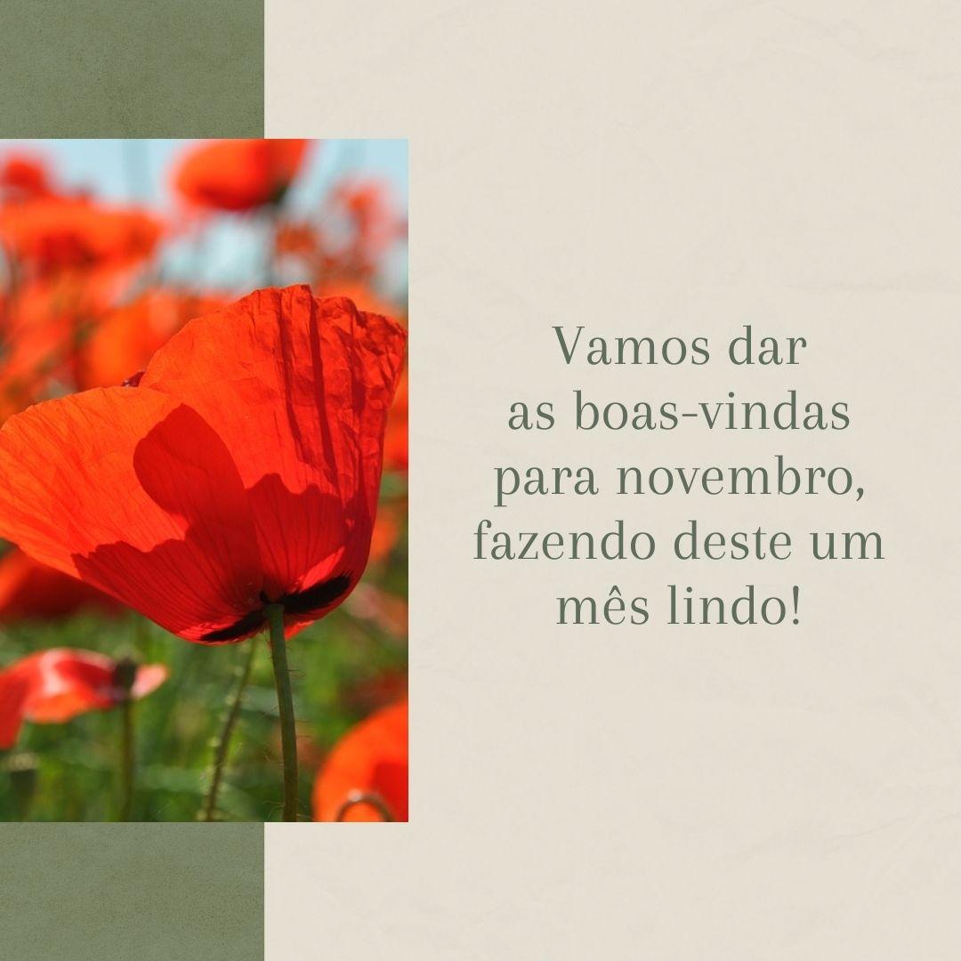 Vamos dar as boas-vindas para novembro, fazendo deste um mês lindo!