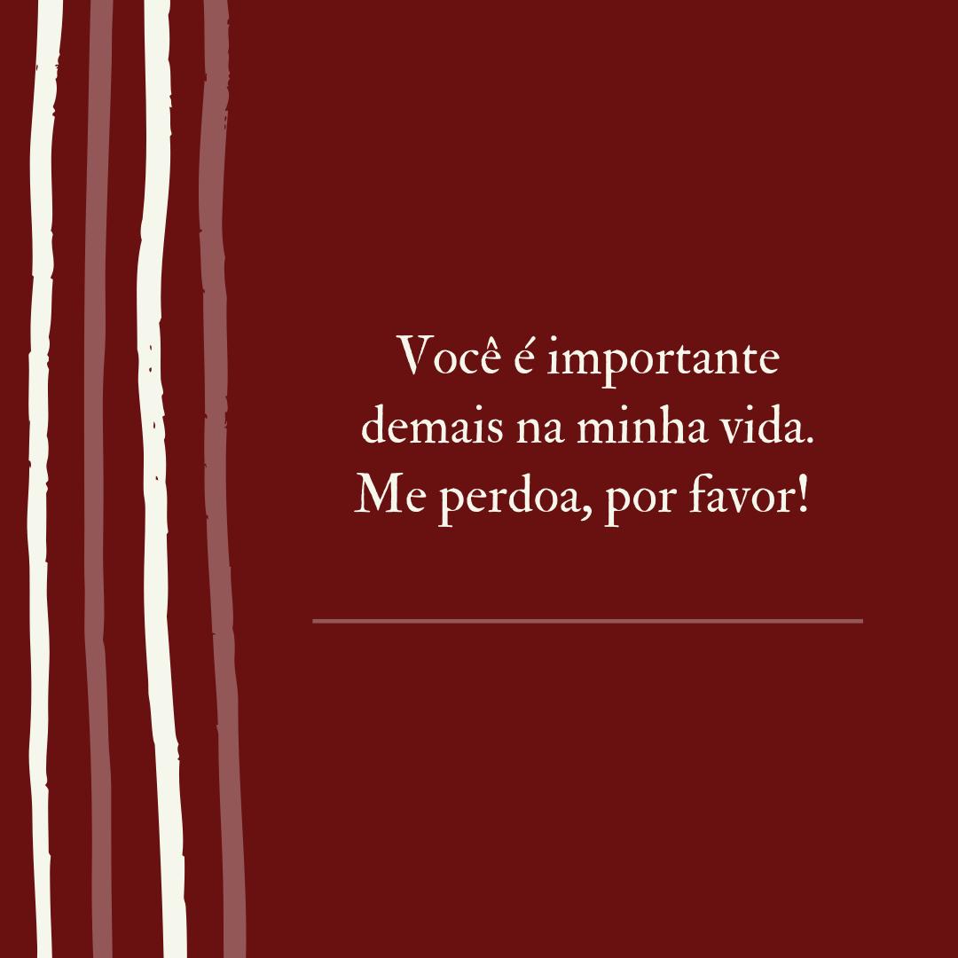 Você é importante demais na minha vida. Me perdoa, por favor!