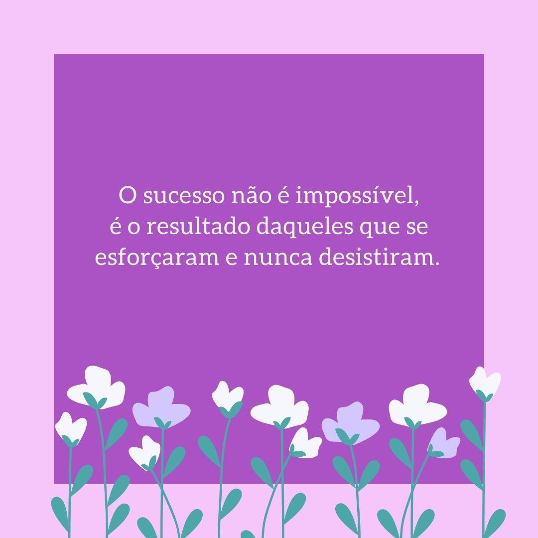 O sucesso não é impossível, é o resultado daqueles que se esforçaram e nunca desistiram.
